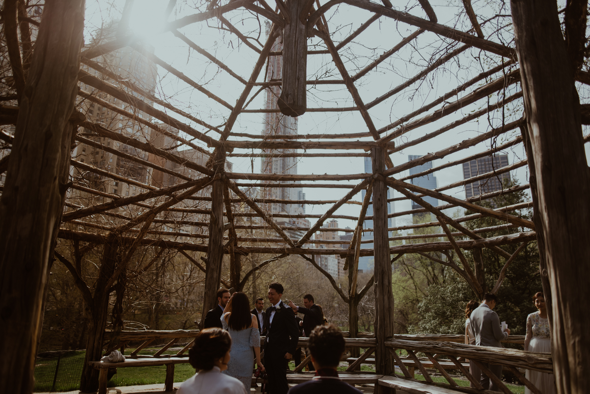 Cop cot views from an elopement wedding in Central Park NYC